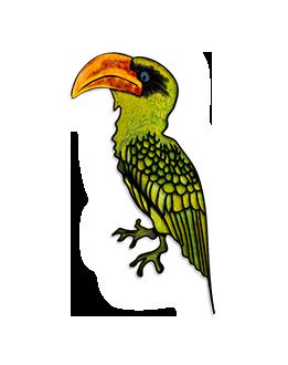 U Ptáka